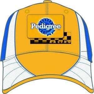 Kyle Busch Pedigree 1st Half Pit Hat: Sports & Outdoors