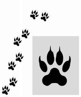 24/ DOG WOLF PAW PRINTS TRACKS DECAL STICKER WALL ROOM