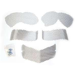 Screen Kit Arctic Cat Silver Automotive