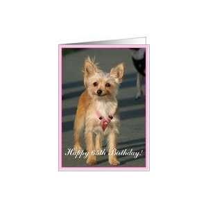 Happy 65th Birthday Chihuahua Dog Card: Toys & Games