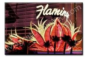 Flamingo Casino Hotel Las Vegas LV Souvenir Magnet #2
