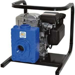 Iron Ag/Water Pump   Honda GC160 Engine, 2in. Ports, Model# 2AG5QCV