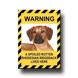 Rhodesian Ridgeback Spoiled Rotten Fridge Magnet