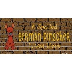 Spoiled German Pinscher Dog Lives Here  Pet Novelty License Plate