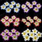 Plumeria Hawaiian Foam Frangipani Flower For Wedding Party Decoration