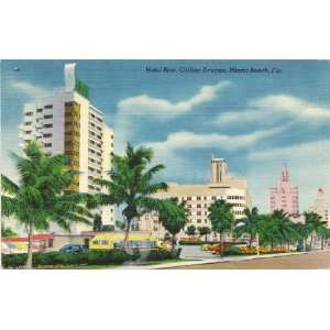 1950s Vintage Postcard Hotel Row on Collins Avenue Miami Beach Florida