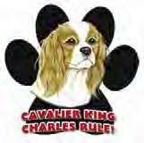 CAVALIER KING CHARLES SPANIEL DOG CAR FRIDGE MAGNET
