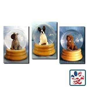 Russell Terrier (Brown and White) Musical Snow Globe   Smooth Home