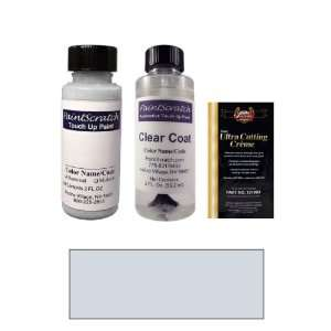 2 Oz. Arctic Silver Metallic Paint Bottle Kit for 1999
