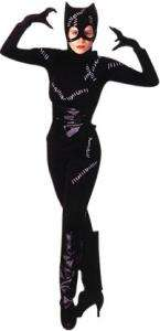 Catwoman Costume   Adult Costumes