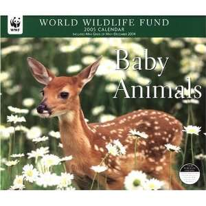 Fund Baby Animals Deluxe Wall Calendar 2005 (9780760751992) Books