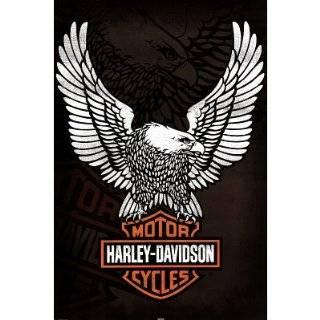 PlastiColor 1002 Large Harley Davidson Logo Molded 14 x