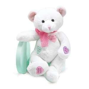 Valentines Day Candy Conversation Hearts Plush Teddy Bear